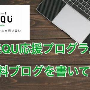REQU特別応援プログラム体験談