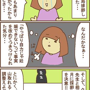 【D21】10月採卵を目指すことに!
