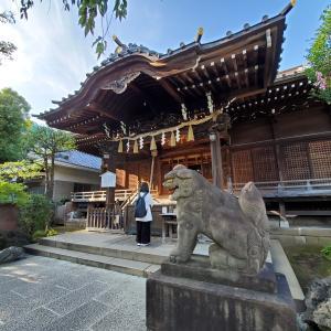 白山神社(文京区) 縁をくくる神様、歯痛の退散とか眼力の狛犬とか