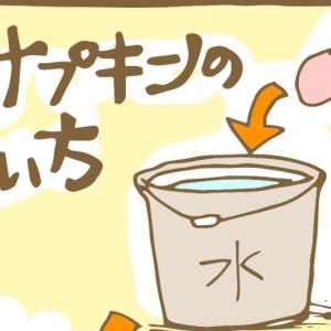 【マンガ】布ナプキンの洗い方!洗剤とか何使ったらいい?
