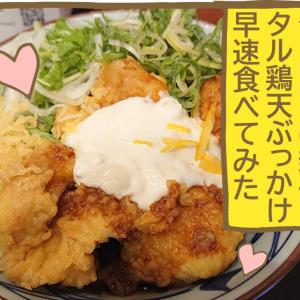【マンガ】丸亀製麺の新作タル鶏天ぶっかけ食べてきたよ!