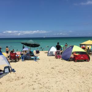 海遊びは性格を外交的に変える発育効果がある