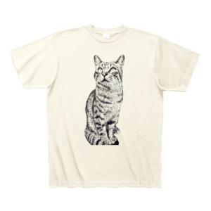 シマシマトラにゃん・Tシャツ(アイボリー)