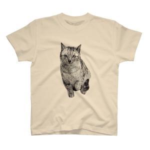 トラ猫シマちゃん Tシャツ