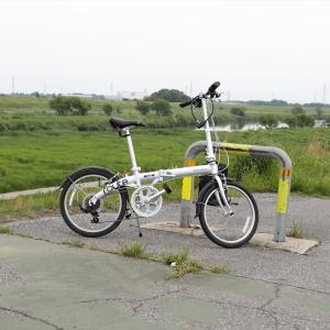 今日の色々  江戸川堤防を関宿まで