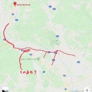 北海道車中泊の旅 総括編 丹頂鶴に会う