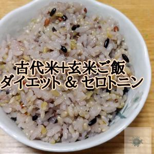 【古代米ダイエット】心と体に栄養を 黒米・赤米・緑米・玄米