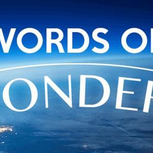 新感覚のクロスワードゲーム「Words of Wonders」が面白い!-暇つぶしに最適です-