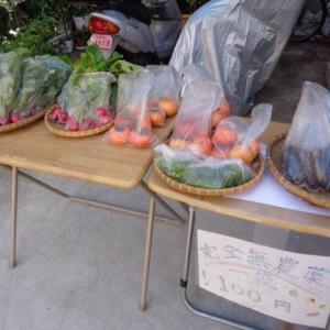 野菜販売・・・しましたよ。趣味の世界です。