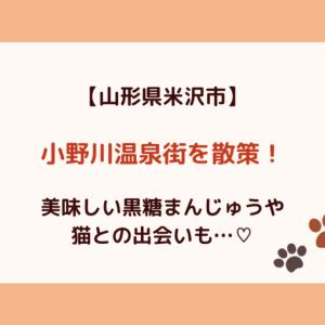 【ほたるの里】山形県米沢市の小野川温泉を散策!駐車場情報も!
