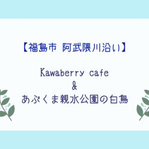 【Kawaberry cafe】阿武隈川沿いのおしゃれなカフェと白鳥観察【あぶくま親水公園】