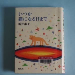 【ラノベの源流】『いつか猫になる日まで新井素子)』を読んで【読書メモ】