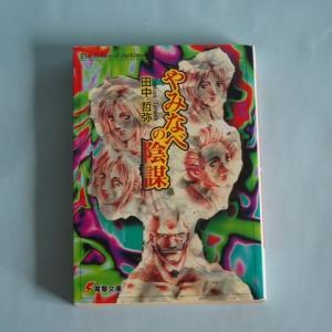 【90年代単巻ラノベを読む】『やみなべの陰謀(田中 哲弥)』を読んで【読書メモ】