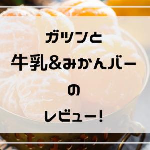 赤城【ガツン、と牛乳&みかんバー】のレビュー