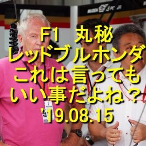 F1 丸秘 レッドブルこれは言ってもいい事だよね? '19.08.15