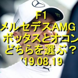 メルセデスAMG ボッタスとオコンどちらを選ぶ?'19.08.19