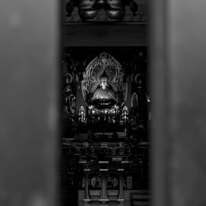 扉の隙間から
