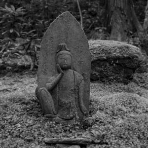 神仏習合とか