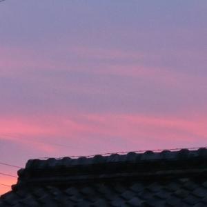 この時期の日没後