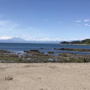 <三浦半島の魅力⑴>海のある生活