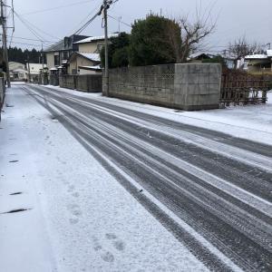 初積雪?!11月20日