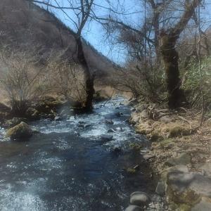 木曽の里川