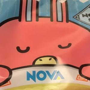 【NOVA倉敷駅前校】で無料体験を受けてのレビュー
