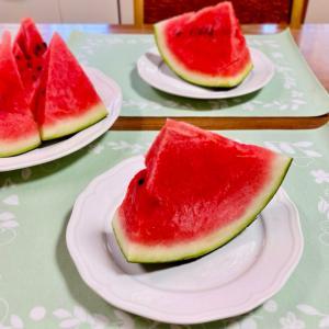 うちの冷蔵庫と、夏ドラ♡TOKYO MER⑤/シェフは名探偵(最終回)の感想