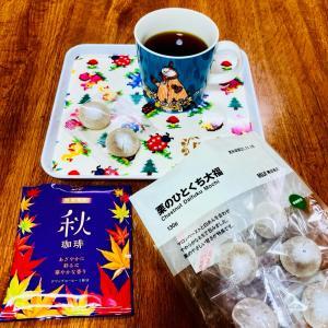 秋コーヒーと、最終回♡ナイトドクター/プロミスシンデレラの感想