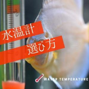 水温計の選び方とは?|水槽の温度を管理しよう【アナログ・デジタル】