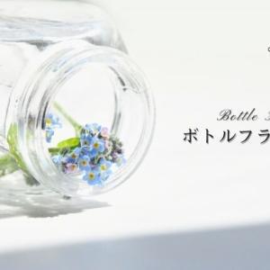 ボトルフラワーとは?|鮮やかな花を長く楽しもう