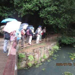 雨の観察会