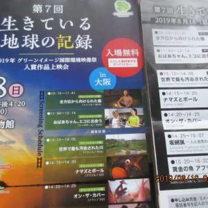 国際環境映画祭入賞作品上映会