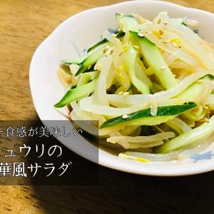 もう一品欲しい時に!安くて簡単、もやしとキュウリの中華風サラダ