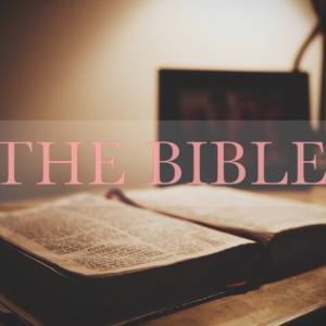 辛い時に読むと心が砕ける聖書の言葉。自分を見つめない人は成長しない