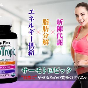 ☆彡新陳代謝の促進、脂肪分解、エネルギー供給の働きでダイエットをサポート!