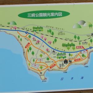 三崎公園へ行く