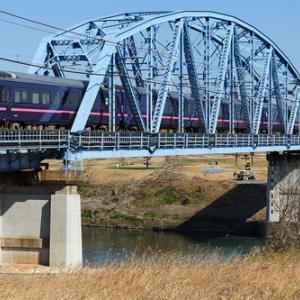 485系「華」による貨物線経由の団臨を川越線で撮る(2020.2.8)