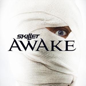 Skillet:Awake ~この世界と自分の中で何かが起きている~