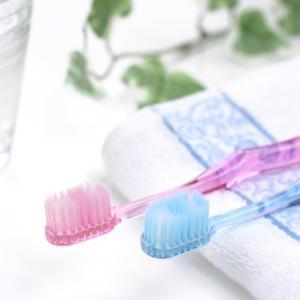 【クレイ】フッ素なし!経皮毒(けいひどく)対策に、手づくりハミガキ粉