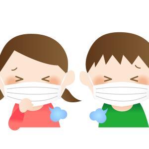 【本日のハーブティー】咳×免疫力アップのホーリーバジル