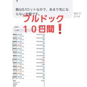 新FXツール収支報告10/11