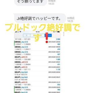 新FXツール収支報告10/10