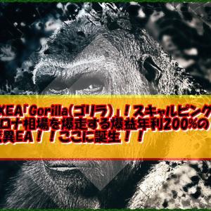 FXEA「Gorilla(ゴリラ)」!スキャルピングでコロナ相場を爆走する爆益年利200%の驚異EA!!ここに誕生!!