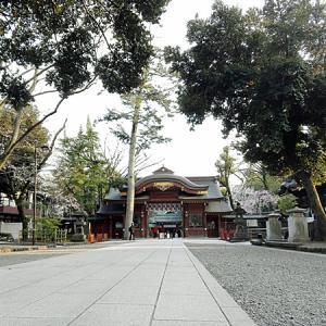 大國霊神社の垂れ桜