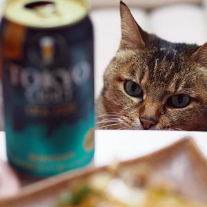 猫とビール@春編