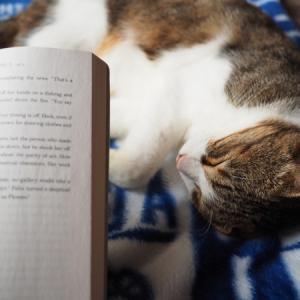 最近、本を読めてません…(泣)