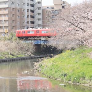 桜と川と鉄道を絡めて撮影してきました。