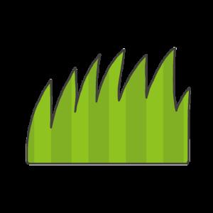 草のイラスト