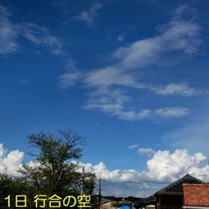 夏の雲が今日までだそうです
